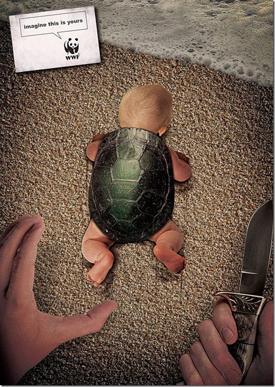 WWF Baby Turtle advertising