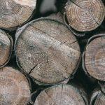 Espositori Porta legna tra design e innovazione