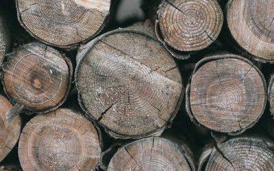espositori porta legna