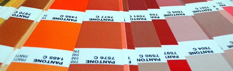 Mazzetta dei colori PANTONE